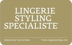 styling award